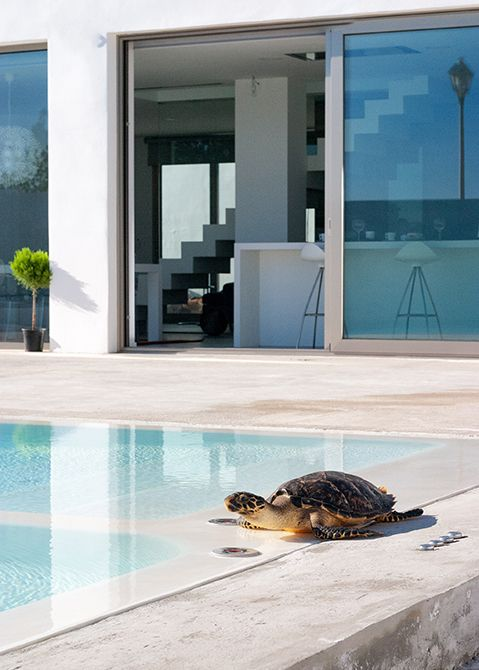 Chiralt Arquitectos I Preciosa piscina a nivel de suelo en vivienda moderna minimalista.