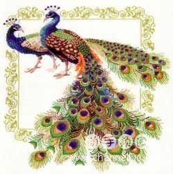 Волшебный мир вышивки крестом: Павлины - райские птицы (схема для вышивки)