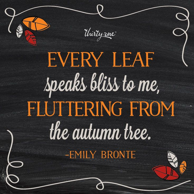 Enjoy all the fall leaves before the leaves all fall!