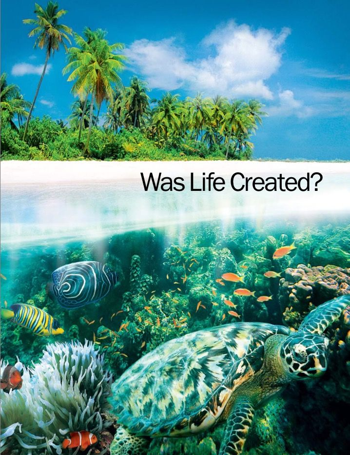 WAS LIFE CREATED?| My favourite magazine. Read here - free.