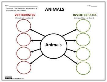 Printables Vertebrates And Invertebrates Worksheets 1000 ideas about vertebrates and invertebrates on pinterest invertebrates