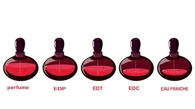 5 Jenis Minyak Wangi Dan Perbedaannya Minyak Wangi Parfum Minyak