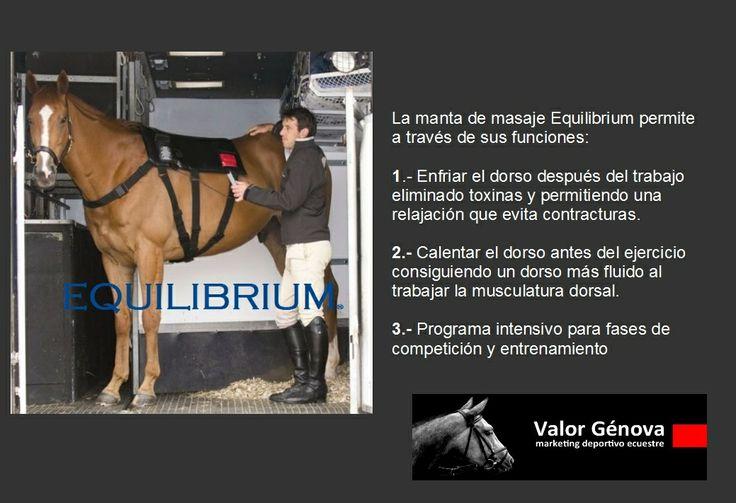 EQUILIBRIUM, manta de  masaje vibratoria