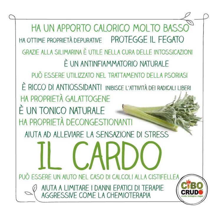 https://www.facebook.com/cibocrudo/?fref=ts