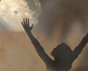 Il mio più grande desiderio: umani e animali che giocano a pallone sotto la stessa luna.