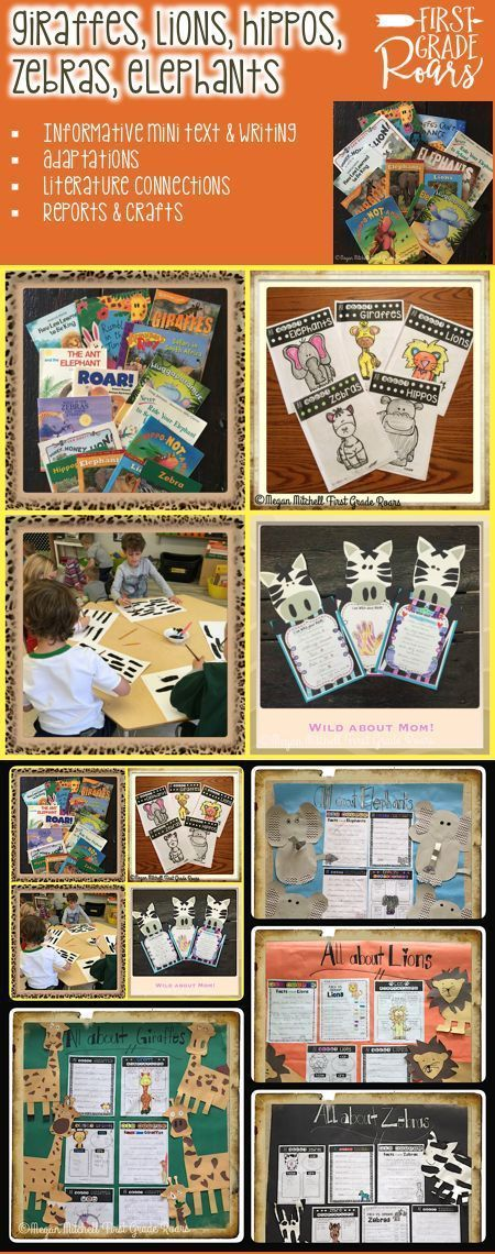 """This bundle will teach your students about 5 different mammals: elephants, giraffes, lions, zebras, and hippos.  Each unit in the bundle comes with a mini informational text, activities to go with the text, different craft options, a report template, and literature connections to some fiction books.  This unit is loads of fun and pairs nicely with my """"Wild About Mom"""" Mother's Day event!"""