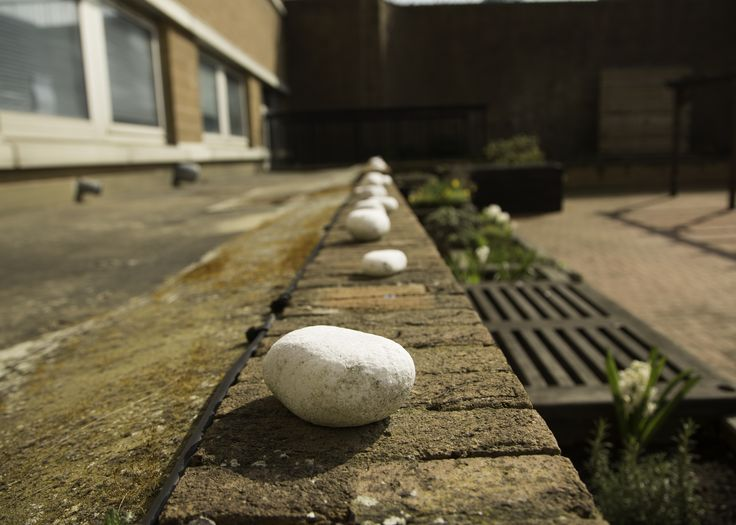 Blind photographer Chris shows a great use of depth of field in this image of pebbles