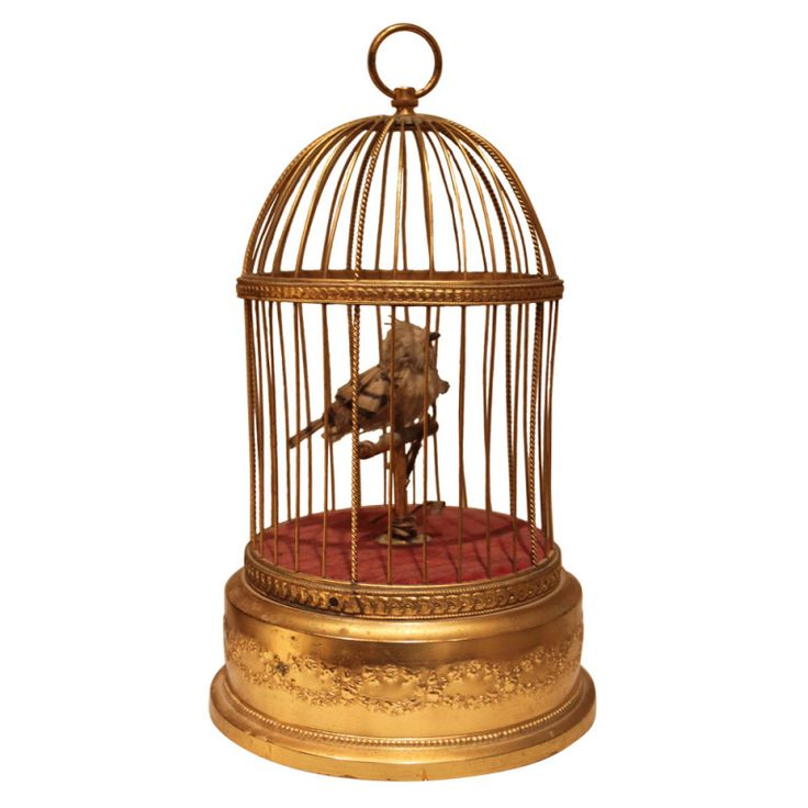 1stdibs | French Automaton Singing Bird in Cage