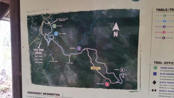 MAP of Hollybank mountain biking tracks