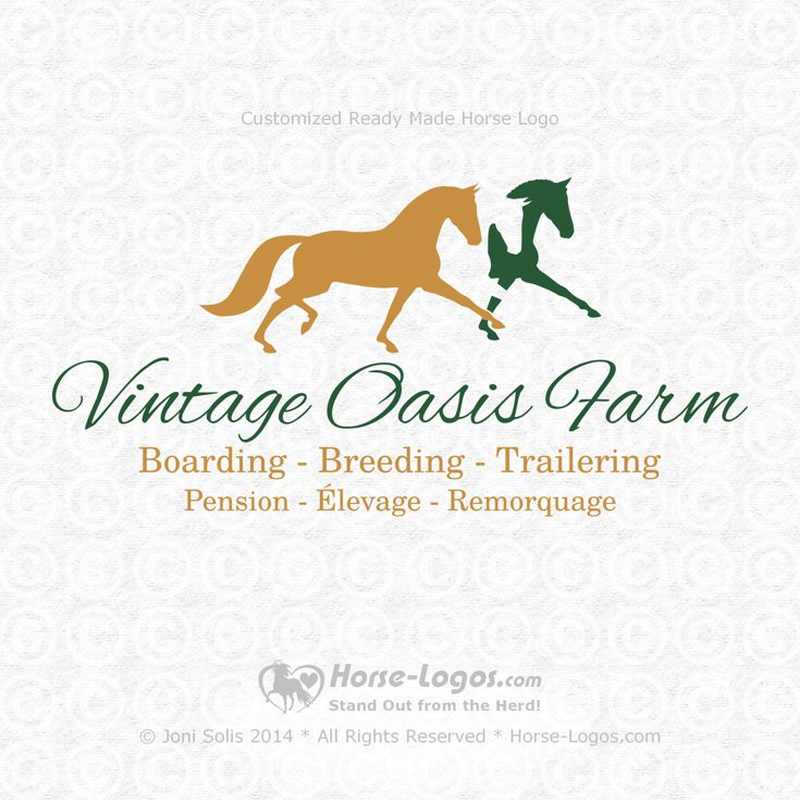 Customized horse logo design created for Jessica Beauchemin of Vintage Oasis Farm @ vintageoasisfarm.com. You can order your own logo design at Horse-Logos.com #equine #equestrian #horse #brand #branding #logo #design