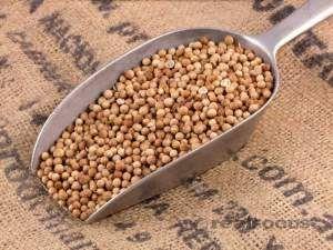 Especiarias – sua farmácia natural Coentro em grão