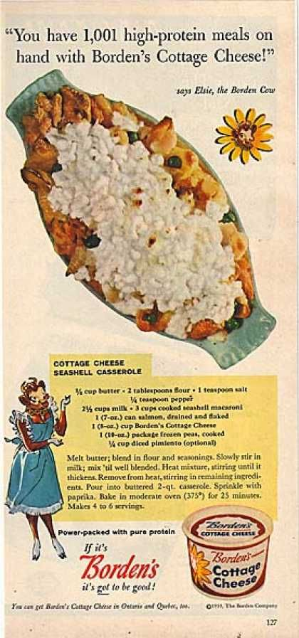 1959 - Cottage Cheese Seashell Casserole - 1001 recipes just like this? Wow, am I lucky or what?