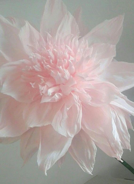 Non solo per rendere magico il tuo evento... Per chi come me non ha il pollice verde, ma non vuole rinunciare in casa o in ufficio al tocco di colore in più che dà una pianta fiorita...consiglio i fiori giganti su stelo... sono di grande effetto e non hai bisogno ricordare di annaffiarli! https://www.etsy.com/it/listing/543955544/grande-fiore-di-carta-su-stelo-pertsy https://www.etsy.com/it/listing/543955544/grande-fiore-di-carta-su-stelo-per