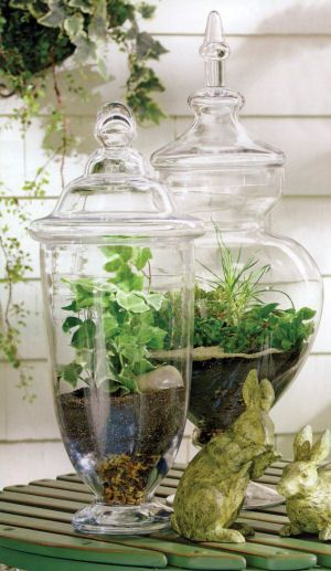 apothecary jars full of spring
