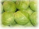 cabbage nutrition - why it is of high nutritional value!