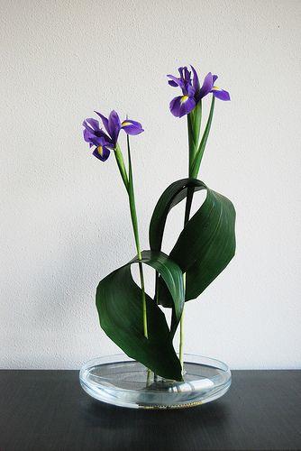 Ikebana 'Iris pas de deux' | Flickr - Photo Sharing!