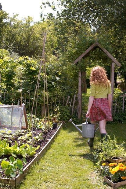 In my head this is what my garden looks like... as I said... in my head.....We have the arbour, the chicken coop...now we need more raised vege beds and a couple of fruit trees <3
