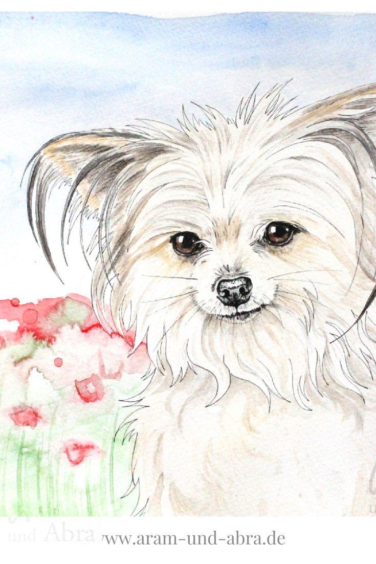 Zeichnung Aquarell von Leni, dem Chihuahua - Yorkshire Terrier - Mischling. Hund auf Blumenwiese. Aram und Abra | malen | zeichnen | Kunst | bunt | www.aram-und-abra.de