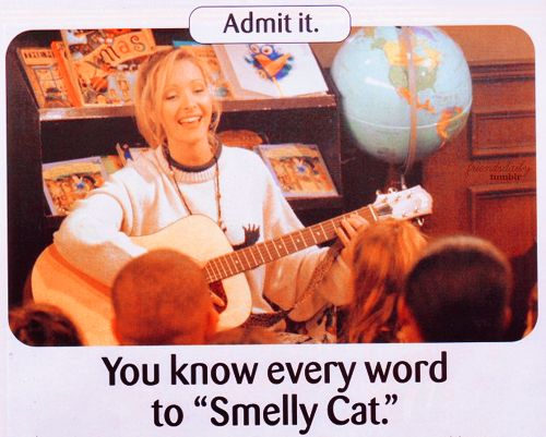 Smelly Cat, Smelly Cat, what are they feeding you...