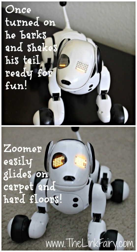 Puppy Toys For 10 And Up : Zoomer robotic dog review holidaygiftguide