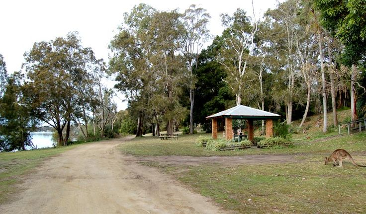 Morriset picnic area, Lake Macquaire State Conservation Area. Photo: Susan Davis/NSW Government
