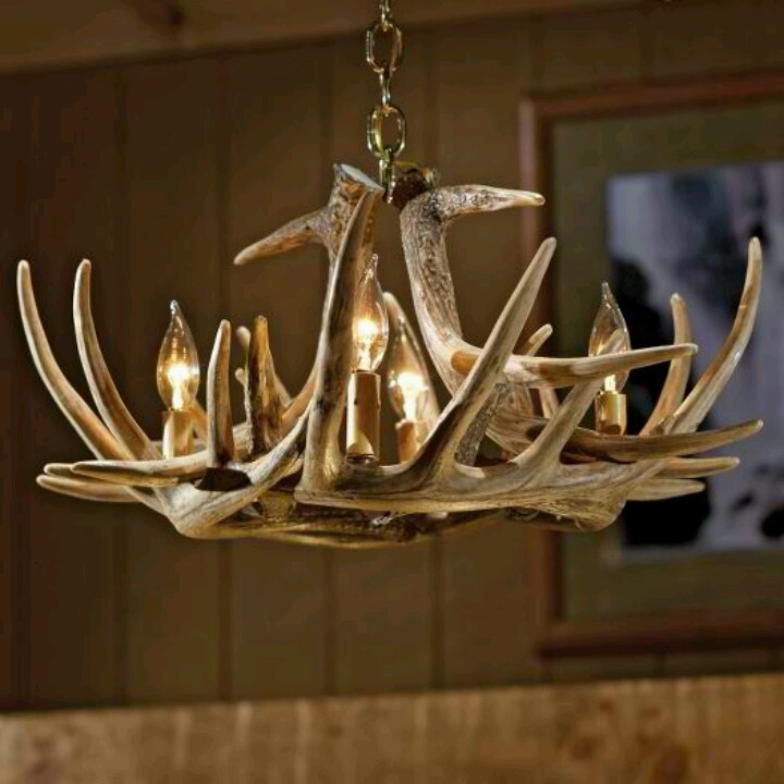 1000+ Images About Antler Chandeliers On Pinterest