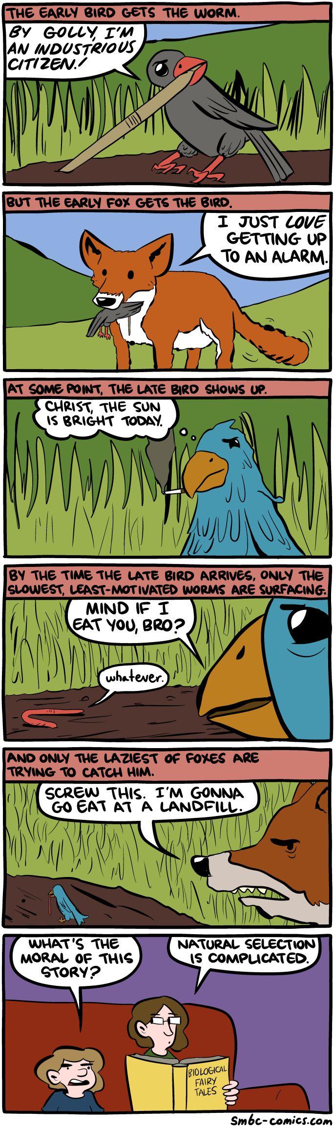 The Early Bird - Imgur