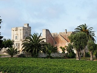 Guest house med svømmebasseng i Salento, Puglia. Feriehus i Martano fra @homeaway! #vacation #rental #travel #homeaway