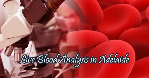 Sun Flower Clinic | Hyperbaric Oxygen Therapy : All You Need to Know about Live Blood Analysis in Adelaide