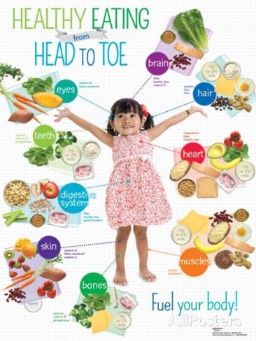 Preschool Healthy Eating Head to Toe Poster Photo at AllPosters.com