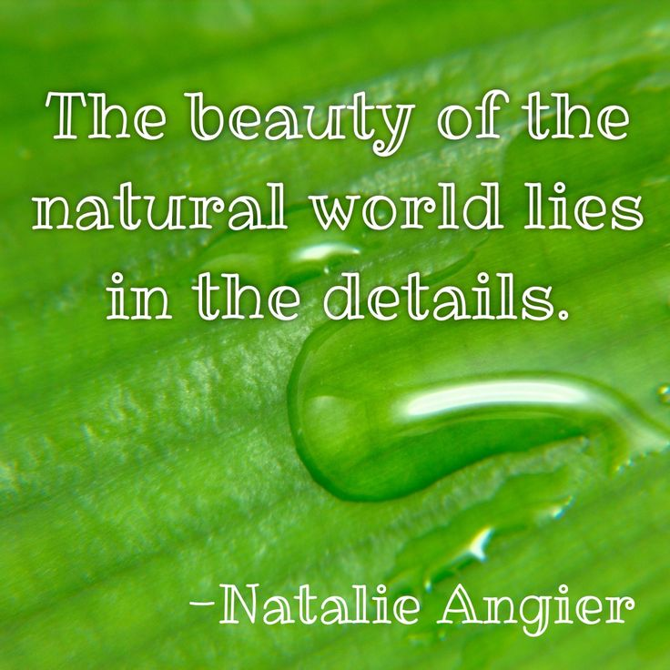 Inspirational Quotes About Nature: #nature #garden #outdoors #beauty #quotes #inspirational