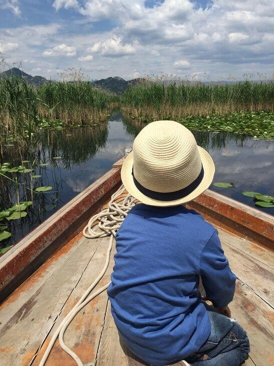 Lake Skadar boat cruises: Drift through the reeds, explore the canals and see rare birds!