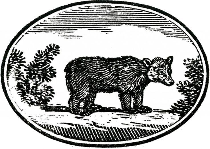 Cute Primitive Bear Image! - The Graphics Fairy