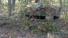 Proper Ground Blind Placement