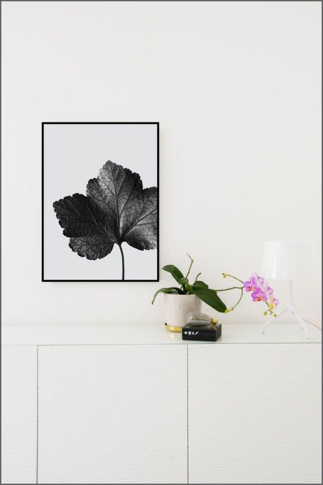 Aciarium - C-print by Details by M #nordicdesigncollective #detailsbym #aciarium #print #grey #nature #leafe #frame #flower #lightbulb #lamp #desk #white #pink