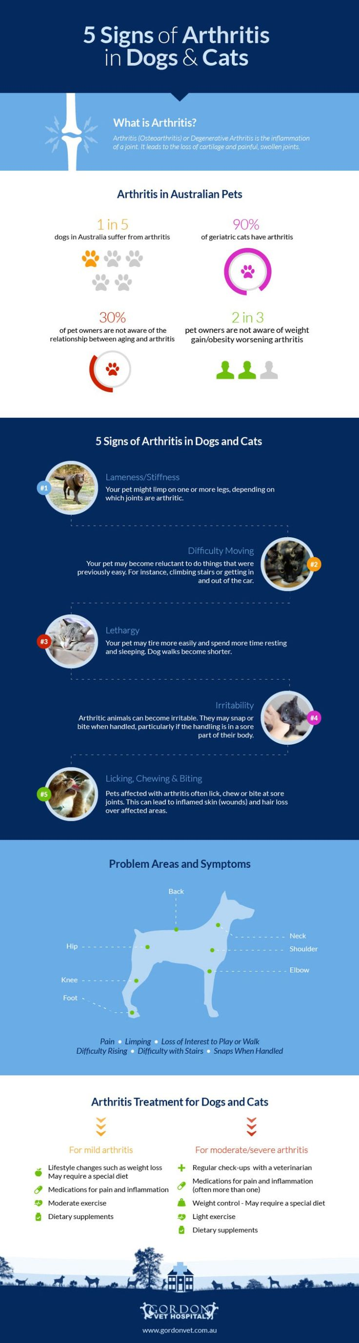 5-signs-arthritis-dogs-cats