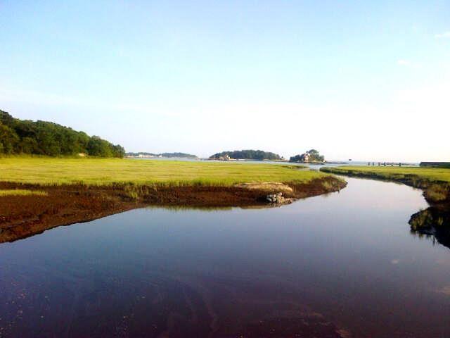 Branford, Connecticut - salt marsh view of the Thimble Islands