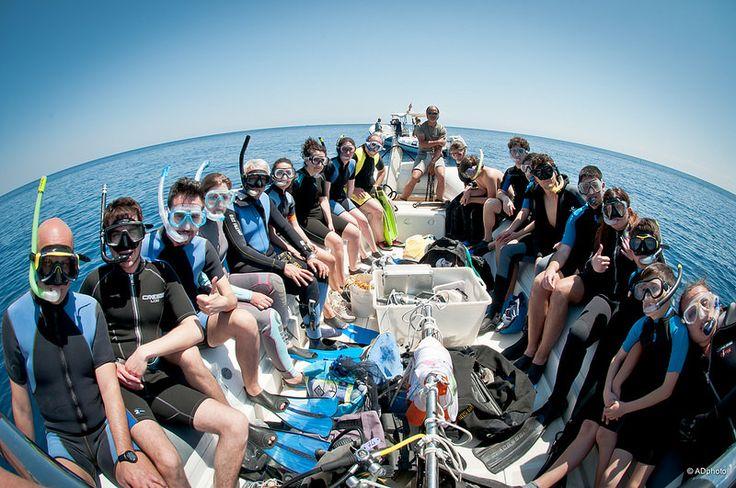 Marlintremiti Diving