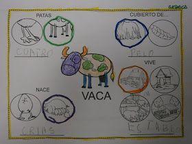 El equipo amarillo escogió, entre todos los animales de granja, LA VACA . Así que lo primero de todo, este equipo dibujo una VACA . A ...