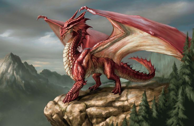 A REAL Welsh dragon New dinosaur discovered in Wales | Geology IN