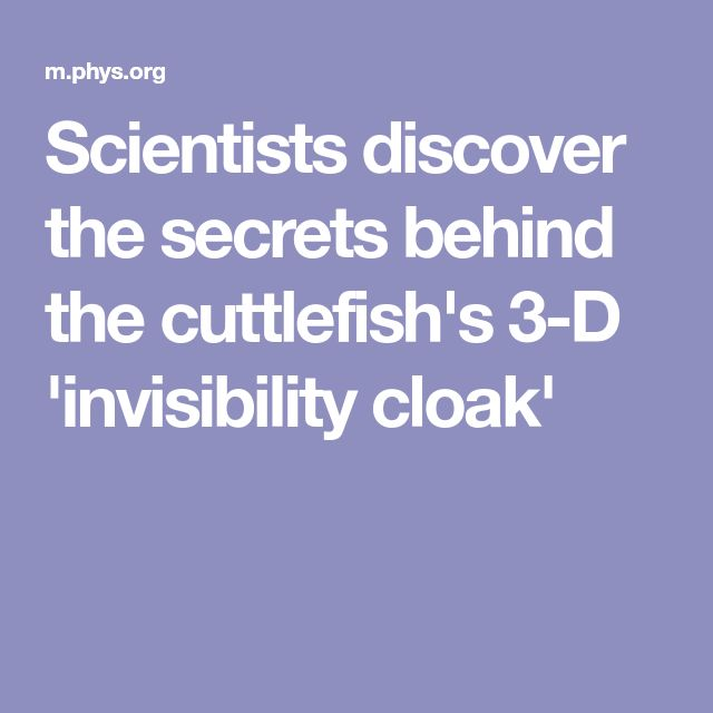 Scientists discover the secrets behind the cuttlefish\u0027s 3-D