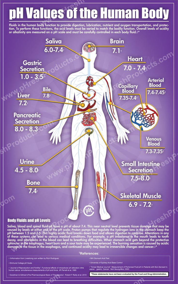 pH of the human body.