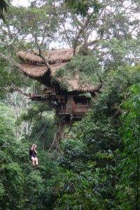 treehousing, northern laos