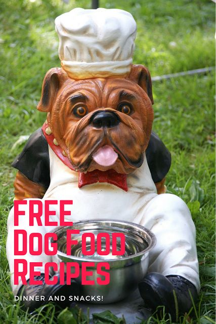 Free dog food recipes homemade dog treats snacks...visit this blog for lots of dog training tips, including barking, biting, aggression, toilet training, jumping, pulling, separation anxiety and more!
