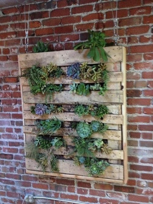 10 wood pallet vertical garden on your wall pallets furniture designs