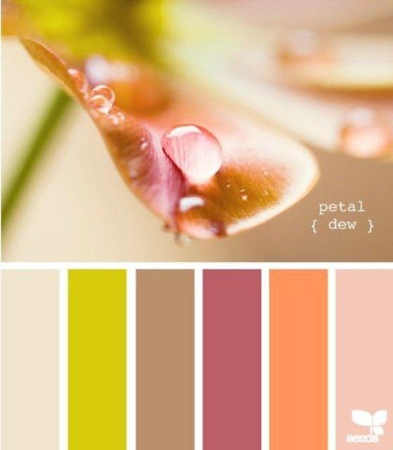 Petal dew - Color Palette - Paint Inspiration- Paint Colors- Paint Palette- Color- Design Inspiration