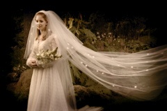 vintage gown and veil - shot by Philbrick Photo
