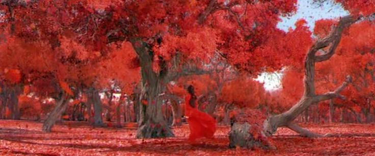 Hero - Anno 2002 - diretto da Zhang Yimou, interpretato da Jet Li, Tony Leung Chiu-Wai e Maggie Cheung. Il film è basato sul tentativo di assassinio a Qin Shi Huang, primo imperatore della Cina, nel 227 a.C. nella residenza di Jing Ke. Il film appartiene al genere Wuxiapian (cinese tradizionale: 武侠片, cinese semplificato: 武侠片, pinyin: Wǔxiápiàn) [fonte: http://it.wikipedia.org/wiki/Hero_(film_2002)]