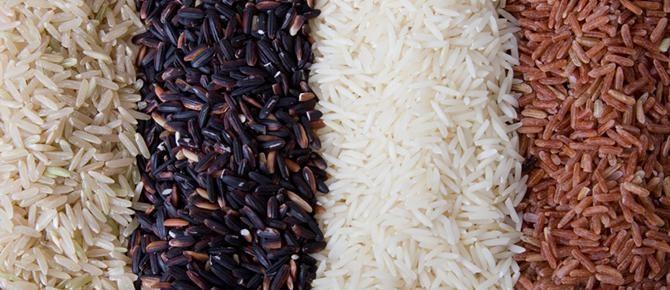 Il riso giusto per ogni insalata | Territori.Coop