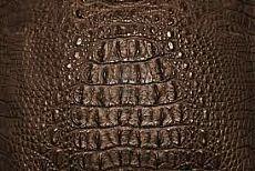 Имитация крокодиловой кожи из полимерной глины или холодного фарфора..